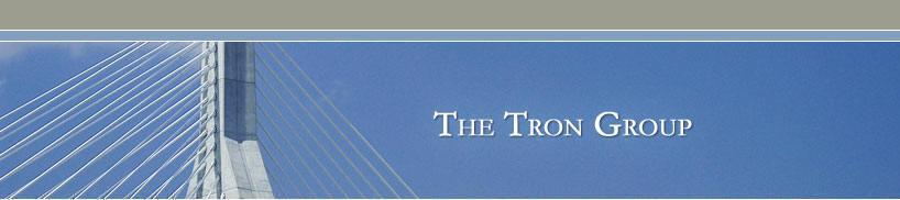 the tron group sample advisory and interim management assignmentsInterim Management.htm #4